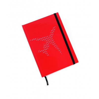 Falcon notebook